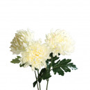 Chrysanthemum Bella, 1 flower, L70cm, cream